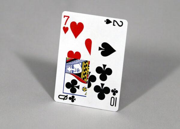 マジシャン専用カスタムカード・名刺制作サービス「Project Business」
